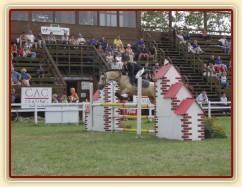 MČR pony 2004, Hradec Králové, 3.kolo parkur SPA