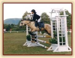 Mistrovství České republiky skoky pony 2003, Frenštát pod Radhoštěm. Greisy a Radka získaly stříbrnou medaili.