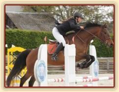 Zobrazit (38 fotek) Parkury, drezury a všestrannost, fotky našich koní