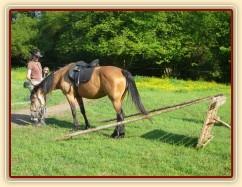 Zobrazit (11 fotek) PNH s Keisy ve volnosti a na laně