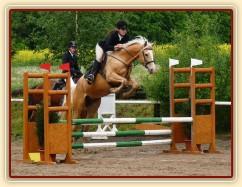Zobrazit (11 fotek) Fotky koní, kteří u nás byli ve výcviku v roce 2009