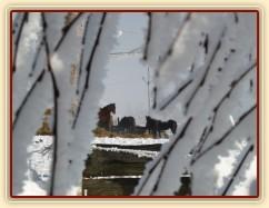 Zobrazit (44 fotek) Koně v zimě, zimní výběh, vyjížďky