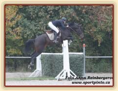 Zobrazit (žádná fotka) Závody s našimi koňmi a koňmi u nás ve výcviku