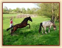 Arwen skáče přes potok
