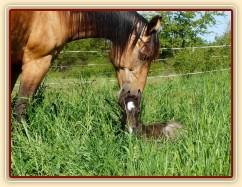 Keisy a Witty den po narození
