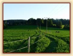 Naše pastviny, pohled směrem k vesnici