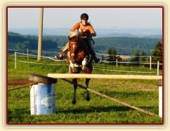 Vikina při skokovém tréninku na jízdárně