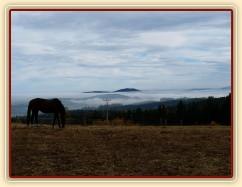 Agáta a kopce v mlze