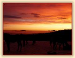 Východ slunce barví mlhu a nebe do neskutečných barev
