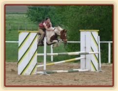 Červen 2010, parkurový trénink na kolbišti ve Všeticích, Vikina skáče s pěkným stylem