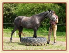 Kasira při práci ze země - stoupnutí do pneumatiky
