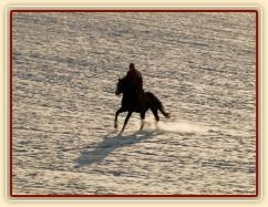 Zima 2010, na vyjížďce