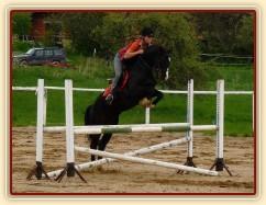 Květen 2010, trénink na kolbišti ve Všeticích, spočátku Grant chodil hodně blízko ke skokům