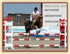 Vikina v soutěži stupně Z