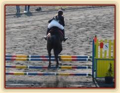 Arwen v soutěži stupně ZM