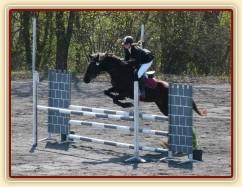 Arwen v soutěži stupně Z