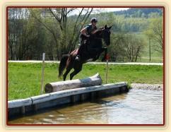 Arwen, skok do vody