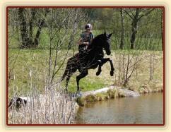 Arwen, seskok do rybníka