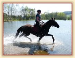 Arwen kluše vodou - je potřeba pořádně zvedat nohy:-)