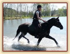 Carthago kluše vodou - je potřeba pořádně zvedat nohy:-)