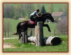 Arwen, výskok