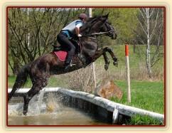 Arwen, výskok z vody