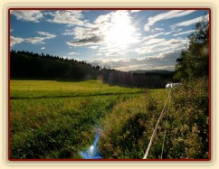 22.8.2011 - Pohled na pastviny