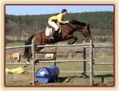 Velký skok :-) (120 x 130)