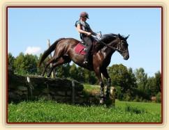 Arwen a seskok, Crossový trénink v Borové 29.8.