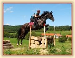 Arwen a skok přes metr dříví, Crossový trénink v Borové 29.8.