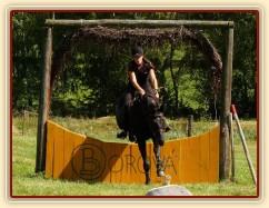 Carthago a průskok, Crossový trénink v Borové 29.8.