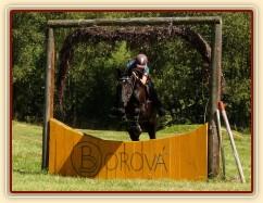 Arwen a průskok, Crossový trénink v Borové 29.8.