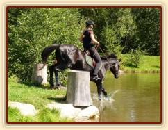 Carthago a seskok do rybníka, Crossový trénink v Borové 29.8.
