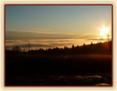 Konečně začíná jaro, brzké ráno, koně u senáže