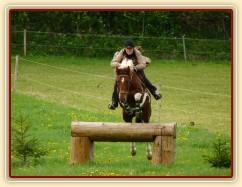 Vikina skáče přes velký oxer, květen 2012