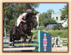 Arwen, parkur ZL Klatovy, srpen 2012