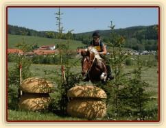 Vikina, všestrannost L Borová (Stříbrná podkova), květen 2012