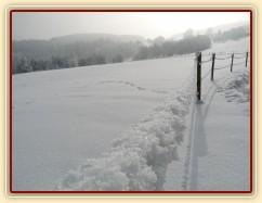 Ohradníkové lanko bývá v zimě trochu větší:-)