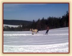 6.3.2013 - Jarní lyžovačka:-) Ještě jsme tu nezažili, aby bylo 30cm sněhu a 10°C :-)
