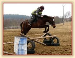 Appaloosa hřebec Monty a jeho první samostatné skoky