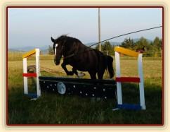 Kroona, skok přes překážku na laně