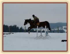 Takhle u nás začal letos v březnu skokový trénink  - na sněhu:-)