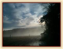 Raní mlha...