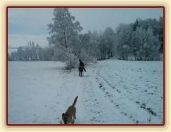 Zimní vyjížďka...