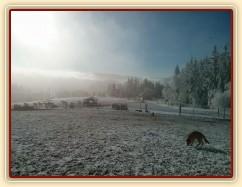 Mlha odešla, námraza zůstala:-)