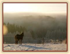 Mlha se valí přes kopce...