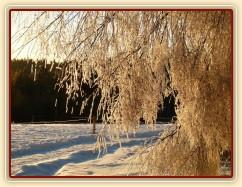 Pěkná horská zima...