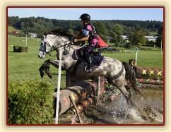 28.9.2014 - Členka našeho klubu, dvanáctiletá Michaela Haderková a její klisna Alpinhorse Midnight Princess, která byla u nás přes rok ve výcviku, získaly 5. místo na MČR pony ve všestrannosti