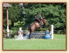 Chesterton, KMK pětiletých koní ve všestrannosti (ZL), Humpolec 18.7.2014