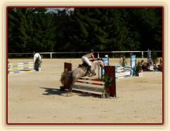Vesna, KMK čtyřletých koní ve skocích (Z), Mariánské Lázně 18.6.2014